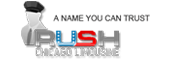 Rush Chicago Limousine